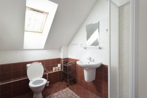 FTVS-342-version1-_17_bathroom_room_big_01_full